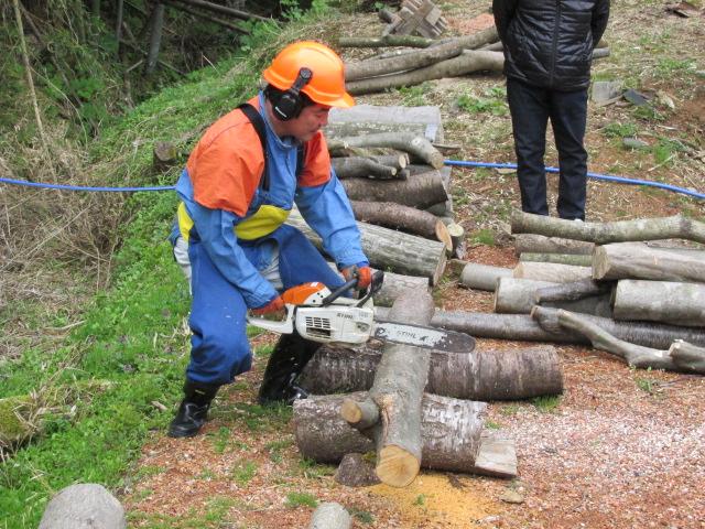 チェーンソーで伐採木切断
