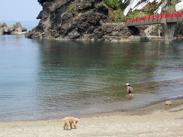 能生町の海水浴場