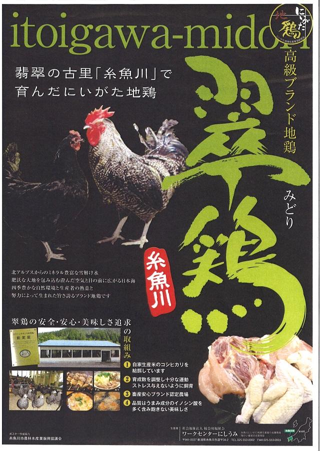 翠鶏パンフレット