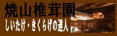 焼山椎茸園