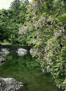 月不見の池写真