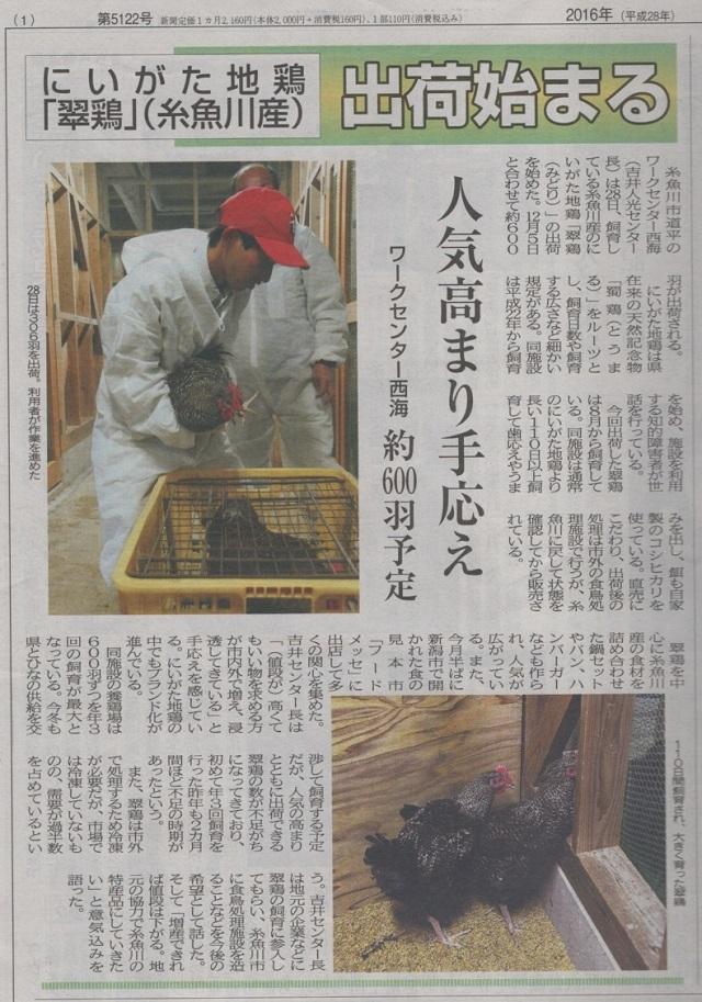 11月29日付け糸魚川タイムス記事