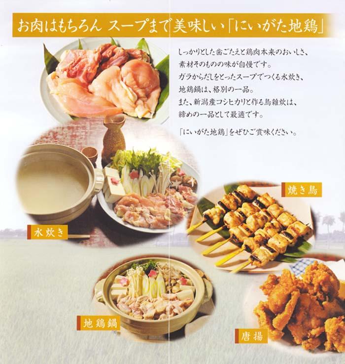 翠鶏紹介4